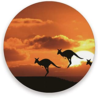 Kangaroo Sunset Australia Wallpaper Coaster for Drinks Absorbent Stone Ceramic Coasters with Cork Base, Suitable for Kinds of Mugs and Cups (4 Pcs)
