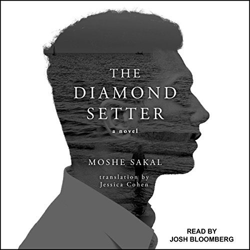 The Diamond Setter cover art