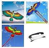 Eva Shop® Cometa infantil de poliéster resistente – Papagayo Dragón – Cometa de vuelo para niños – Juego de vuelo – 110 x 50 cm – Incluye 50 m de cuerda y 2 x 140 cm de rayas (verde)