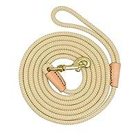 Wishdeal Laisse de Dressage Durable en Nylon pour Chien 3 m 5 m 10 m 20 m pour Chiens de Taille Moyenne et Grande Taille