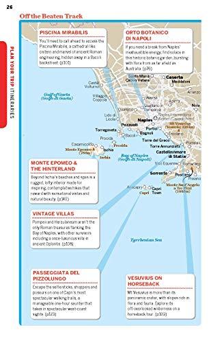 Lonely Planet Naples, Pompeii & the Amalfi Coast 6 (Regional Guide) - 51DyCX UvSL. SL500