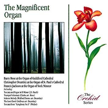 The Magnificent Organ