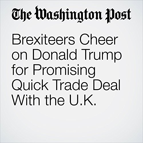 Brexiteers Cheer on Donald Trump for Promising Quick Trade Deal With the U.K. copertina