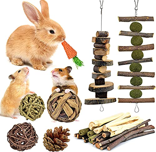 KATUMO Bunny Chew Toys, 100% Natural Apple Wood Chinchillas Guinea Pigs Hamsters Pet Toys Accessories Suitable for Rabbits Squirrel Gerbils Small Pets Chewing...