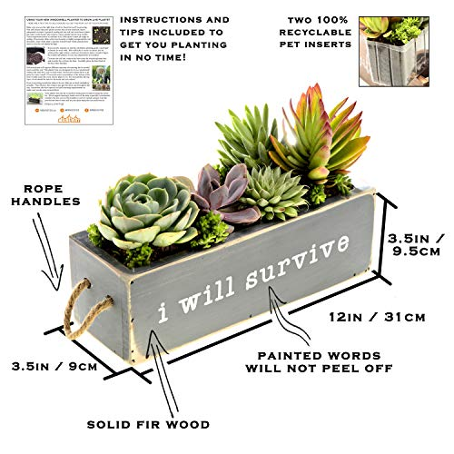 Rustic Windowsill Planter - with 2 Planter Liners - Modern Farmhouse Windowsill Herb Planter for Kitchen Decor, Decorative Succulent Planter Box, Wood Planter Box Rectangle with Rope Handles (Gray)