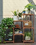 Plant Stands for Indoor Plants, Wood Outdoor Tiered Plant Shelf for Multiple...