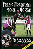 Trick Training Your Horse To Success
