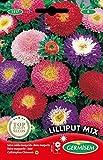 Germisem Lilliput Mix Semi di Aster Cinesi 1 g