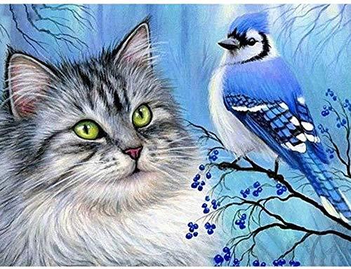 QIAOYUE Pintar por números para Adultos y niños Kit de Pintura DIY Principiante Pintura Arte Lienzo preimpreso 40X50Cm (sin Marco) Paisaje de Gatos y pájaros sin Marco