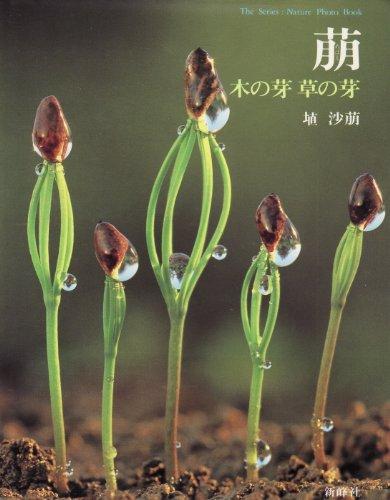 萠(メバエ)―木の芽 草の芽 (The series:nature photo book)の詳細を見る