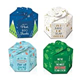 Pop-Up Origami Real Desk Plants - Set of 4, 1 of Each Design - Employee Appreciation
