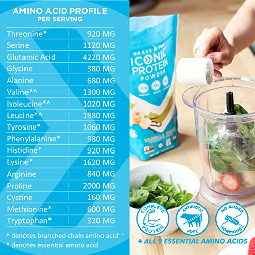 Iconic Protein Powder, Chocolate Truffle, 1 Lb (17 Serving) | Sugar Free, Low Carb Protein Shake | 20g Grass Fed Whey Protein & Casein | Lactose Free, Gluten Free, Kosher, Non-GMO | Keto Friendly 7