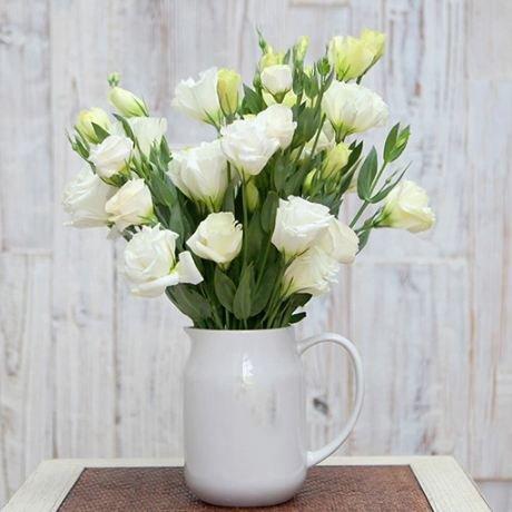 200pcs rares graines blanches Eustoma vivaces plantes à fleurs Balcon fleurs en pot Graines lisianthus pour planteur de pot de fleurs 3