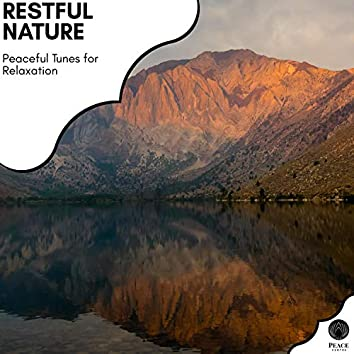 Restful Nature - Peaceful Tunes For Relaxation