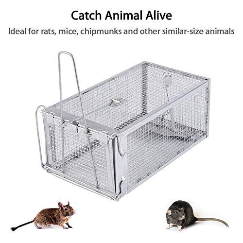 PoeticHouse Lebendfalle Rattenfall Mausefalle Lebend Falle Metall Für Wühlmause Mäuse Ratten Siebenschläfer 27X14X12cm Excellent