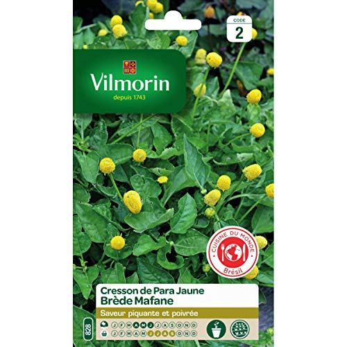 Vilmorin - Sachet graines Cresson de para jaune