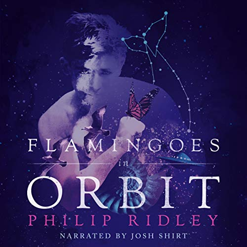 Flamingoes in Orbit audiobook cover art
