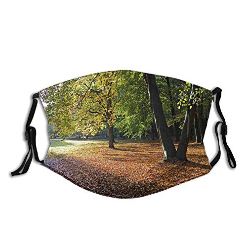 Multifunctional Cloth Washable Half , Tranquil Tiergarten in Berlin Germany Forest Sightseeing Urban View Autumn Season,Soft Mouth Cloth Breathable Mouth Cover Anti-Dust Dustproof for Outdoor Use