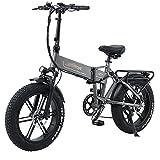 WZW R7 Adultos Bicicleta Electrica 800W 4.0 Gordo Neumático montaña Bicicleta eléctrica 48 V / 12,8 Ah Retirable Litio Batería Eléctrico Bicicleta 7 Velocidad Hombres Mujeres Bicicleta eléctrica