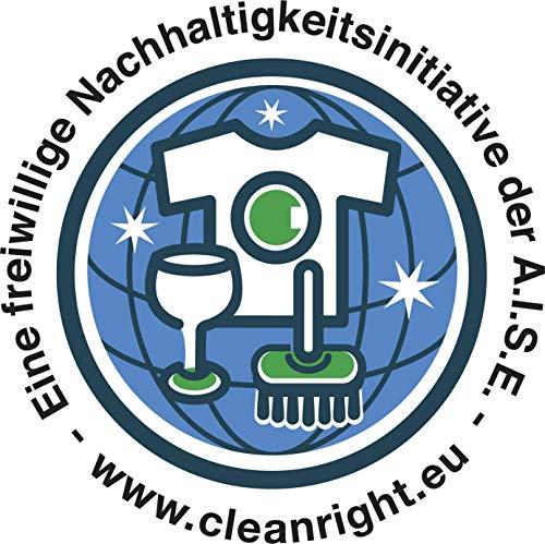 Dr. Beckmann Fleckenteufel Schmiermittel & Öle 3 x 50 ml | Mit Anti-Fett-Komplex | Fleckenentferner
