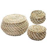 Cabilock 3pcs Mini Straw Hand Woven Storage Baskets with Lids Round Small Seagrass Box Desktop Storage Basket Bathroom Desktop Kitchen Toy Storage Bin(Assorted Color)