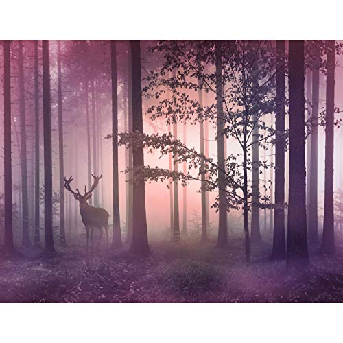 Fotobehang natuur bos, vlieswand, behang, woonkamer, slaapkamer, kantoor, hal, decoratie, wandschilderijen XXL, moderne wanddecoratie, 100% MADE IN GERMANY - 9338bP Natuur 396 x 280 cm - 9 Bahnen B