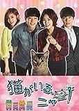猫がいる、ニャー! DVD-BOXII[DVD]