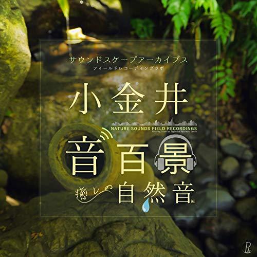 湧き水の響き - 石組みからこんこんと湧き出る名水~東京の名湧水57選 (貫井神社サウンドスケープ)