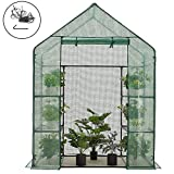 AMERLIFE Mini Walk-in Greenhouse Indoor Outdoor 3 Tier 8 Shelves with PE Cover and Roll-Up Zipper Door Extra Wind Ropes and Hooks for Indoor Outdoor Use, 77''x56''x56''