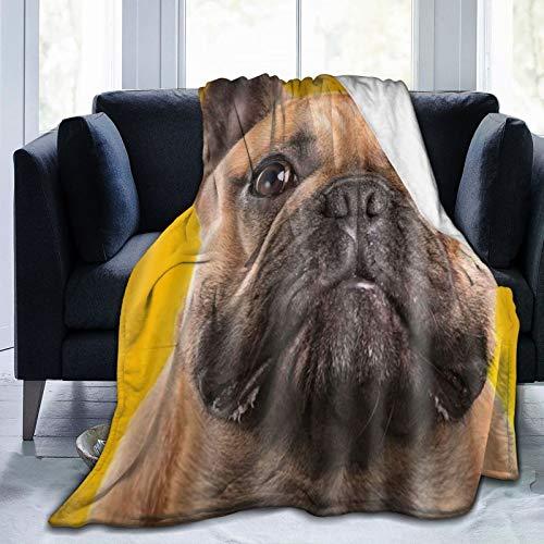 XINGAKA Coperta in Pile di Corallo,Cucciolo di Bulldog Francese Tema Cane Carino,Adatto al Campeggio con Divano Letto,Comodo e Morbido 204x153cm