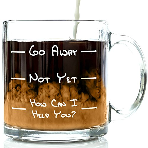 Go Away Funny Glass Coffee Mug 13 oz -...