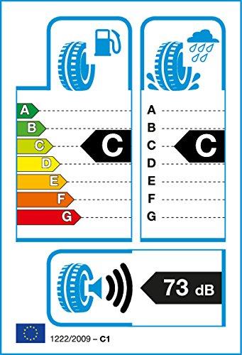 Roadstone rt15305–225/70/R16103H–C/C/73db–Neumáticos de invierno