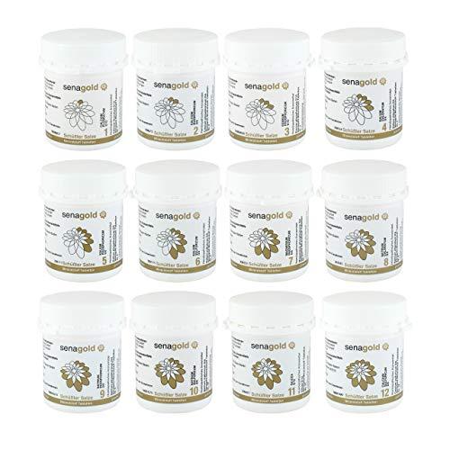 Schüssler Salze Set Nr. 1-12 je 400 Tabletten * glutenfrei * hergestellt nach HAB in Deutschland (12x400 Tabletten)