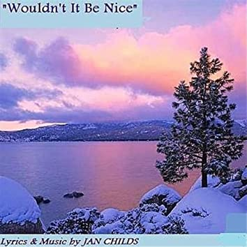 Wouldn't It Be Nice (Christmas in America 2010)