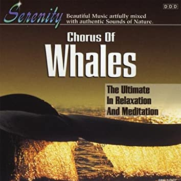 CHORUS OF WHALES