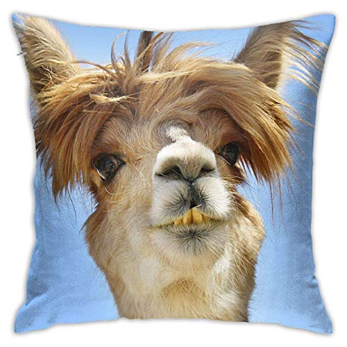 Funda de cojín Throw Cojín Throw Pillow Case Alpaca con pelo divertido Funda de Almohada 45X45CM