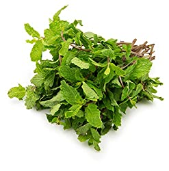 Fresh Mint Leaves, 100g
