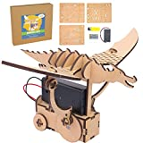 Dragon Bot - DIY Wood Robot Kit for Kids and Adults - Engineering Toy Made from Laser Cut Wood, Ages 12+