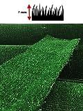 Zoom IMG-2 prato sintetico 7mm manto erboso