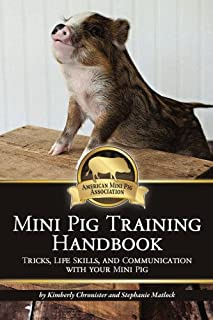 Best mini pig tricks Reviews
