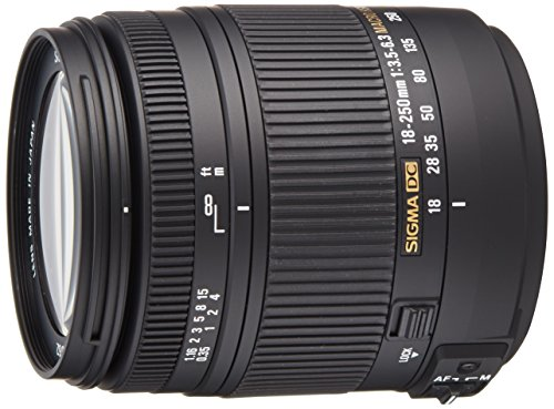 Sigma 18-250mm F3,5-6,3 DC Macro OS HSM Objektiv (62 mm Filtergewinde) für Sony A-Objektivbajonett