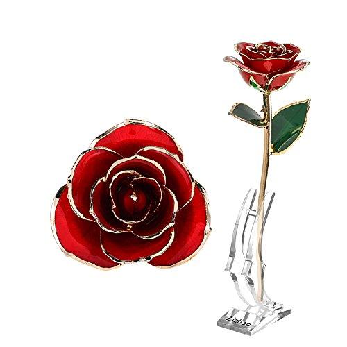 Fydun Oudere gouden roos groen blad rode lange stam duikde 24k gouden roos in de geschenkdoos met heldere rode rozen voor hem