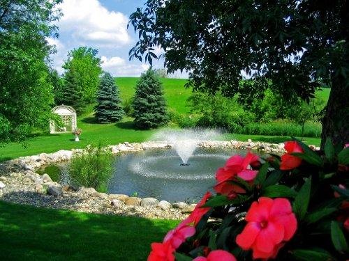 Kasco Aerating Fountain - 1 HP, 120V, 100-Ft. Cord Model Number 4400VFX100