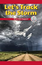 Let's Track the Storm: What Will Happen? (Computer Science for the Real World)