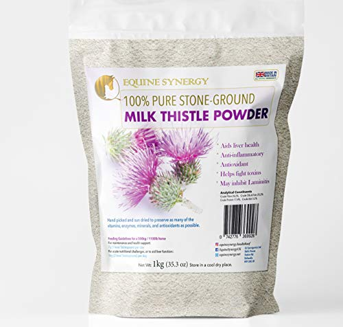 Equine Synergy 100% Pure Stone-ground Milk Thistle 1kg - Detoxification, immune support and liver health