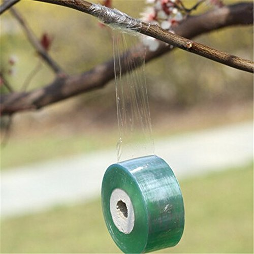 Outils de jardin Sécateurs d'arbres fruitiers Gravure Branche Jardinage Bind Ceinture PVC Cravate Tape 2 cm x 100 m / 1 RolI jt002