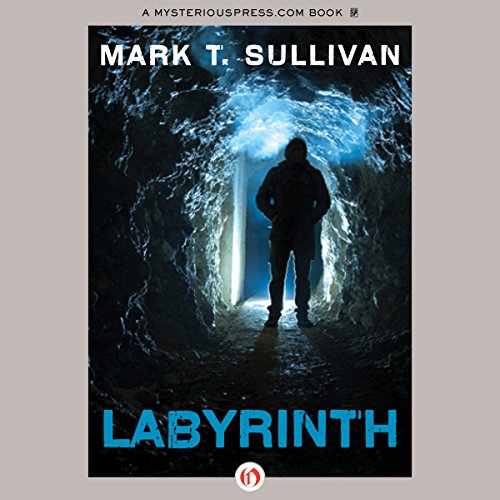 Labyrinth audiobook cover art