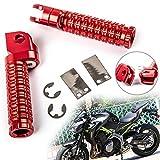 Artudatech Reposapies Moto Delantero, Metal CNC Estribo Moto Reposapiés Moto Clavija Motocicleta Foot Rest para KA-WA-SA-KI NINJA 250 R 300 400 R 650 1000