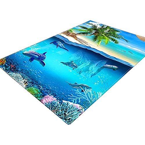 MAATCHH Carpets Rugs Modern Minimalist Carpet Living Room Bedroom Full Bed Blanket Cushion Sofa Blanket Nordic 3D Underwater World for Living Room (Color : Multi-colored, Size : 50x80cm)