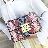Mdsfe Bolsos para Mujer 2020 Vintage Luxury Designer Serpentine Handbag Chain Leather Flap Clutch Purse Ladies Shoulder Crossbody Bag Sac - Rosa1